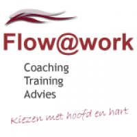 Flow@Work Coaching, training en advies